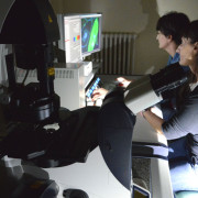 Confocal Laser Scanning Microscope (Clsm)